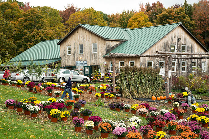 Dutton Farm Shed on Route 30 in Newfane, Vermont.